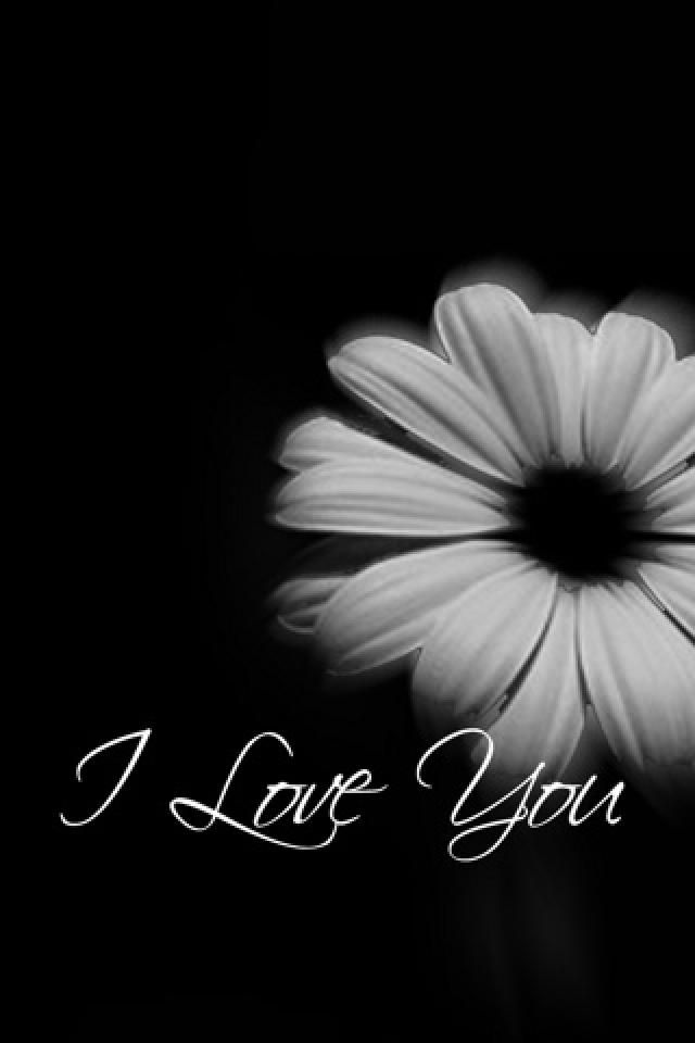 Download · I love You,640x960,960x640,wallpaper,background,iPhone 4,Apple