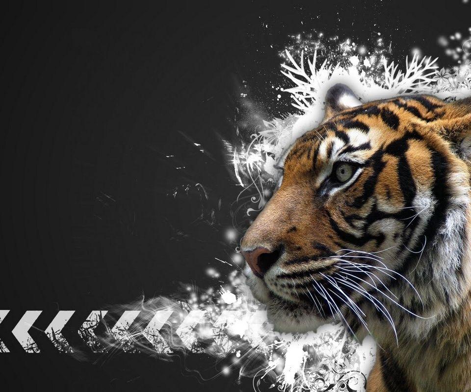 Tiger Art Wallpaper Jpg 960 800: 960x800 Popular Mobile Wallpapers Free Download (91