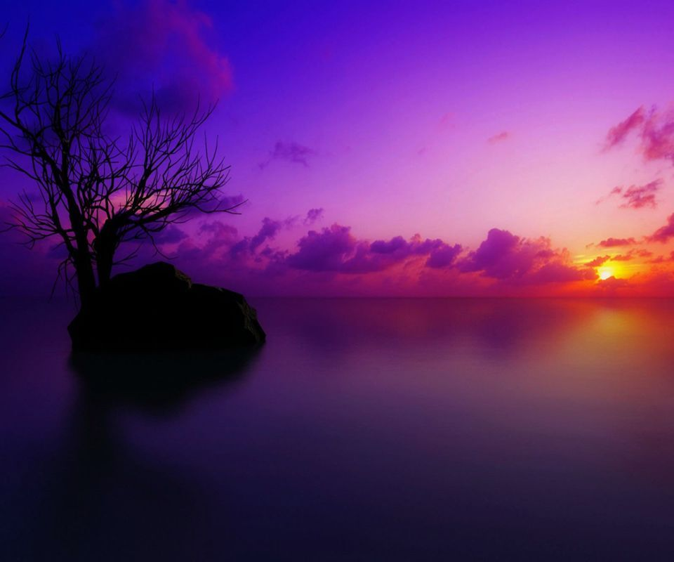 sunset awesome purple,960x800,800x960,wallpaper,background